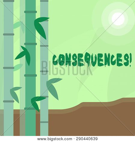 Conceptual hand writing showing Consequences. Business photo text Result Outcome Output Upshot Difficulty Ramification Conclusion Colorful Set of Leafy Bamboo and Moon or Sun with Round Beam. poster