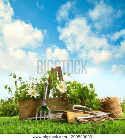 Fresh herbs with garden tools in the grass