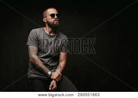 Portrait Of A Handsome Balded Man With Long Well Trimmed Beard Wearing Sunglasses And Grey Shirt Loo