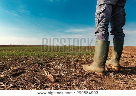 Farmer Planning Agricultural Activity In Field, Man In Rubber Boots Standing On Farmland Ground