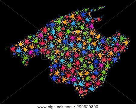 Bright Vector Marijuana Majorca Map Collage On A Black Background. Template With Bright Weed Leaves