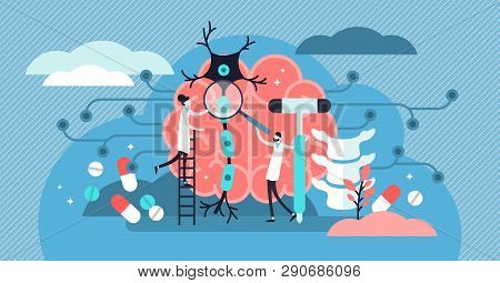 Neurology Vector Illustration. Flat Tiny Nerve Study Doctor Persons Concept. Anatomical Knowledge Sc