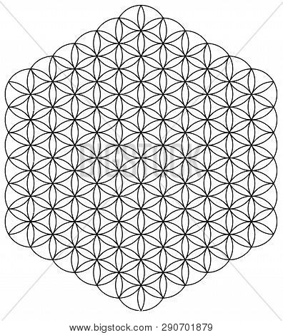 circles sacred symmetry esoteric hexagon harmony illustration poster