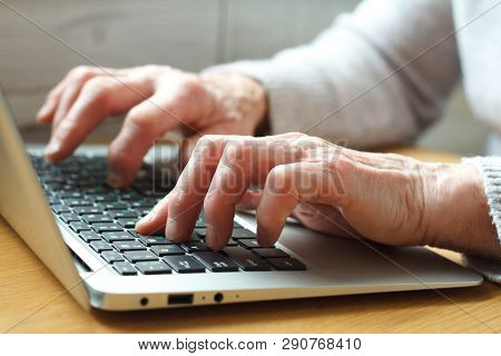 Mature Female Hands Typing Text On Keyboard, Senior Elderly Business Woman Working On Laptop, Old Or