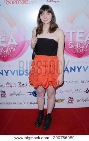 LOS ANGELES - MAR 17:  Zelda Cross at the 2019 Transgender Erotica Awards TEA Show at the Avalon Hollywood on March 17, 2019 in Los Angeles, CA