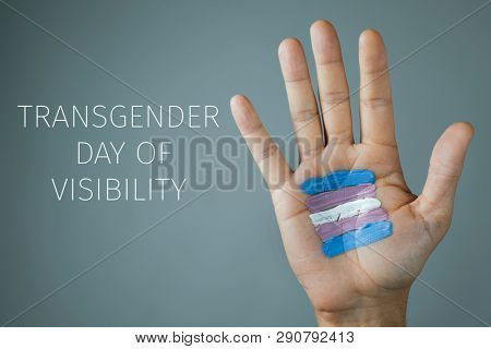 the text transgender day of visibility and the palm of the hand of a young caucasian person with a transgender flag painted in it, on a gray background
