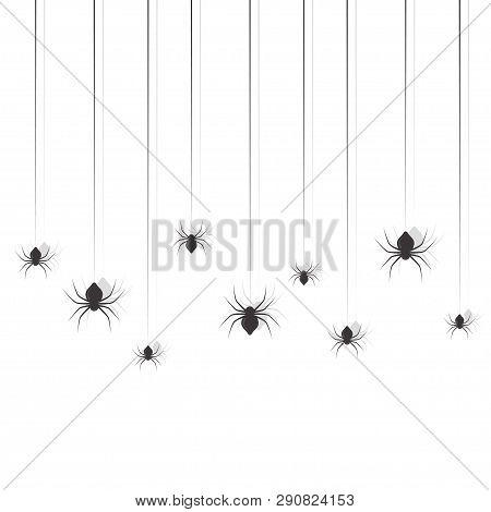 Hanging Spiders. Halloween Sing Design Vector Set
