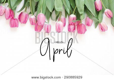 Inscription Hello April. Tulip Flower. Spring Background.