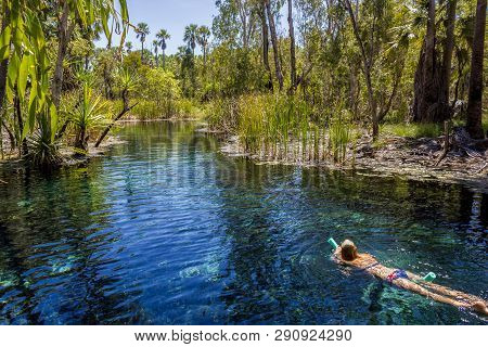 Young Women Is Swiming In Mataranka Hot Springs In Waterhouse River, Mataranka, Northern Territory,