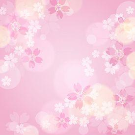 Pink Sakura Frame On A Pink Background