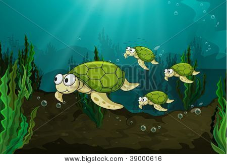illustration of a turtles under sea water