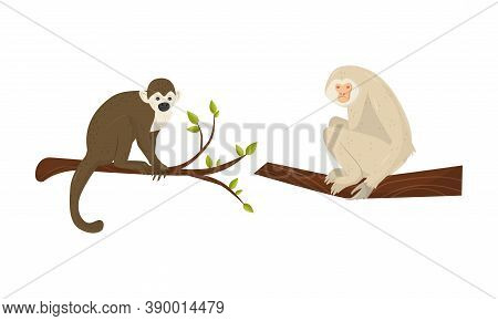 Monkey With Chimpanzee Sitting On Tree Branch Vector Set