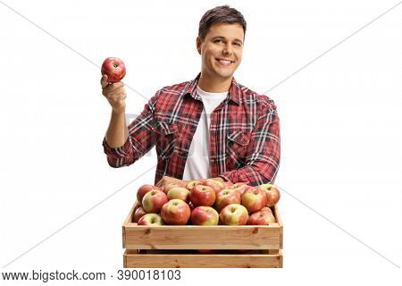 Young man posing with a wooden crate full of fresh organic apples isolated on white background