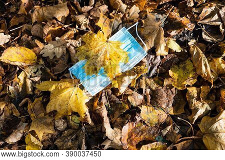 Dropped Sanitary Face Mask Covered By Fallen Maple Leaves In Leaf Litter On Sunny Autumn Day