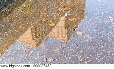 Rain Puddle With Fallen Leaves And Reflection Of High-rise Building On Sunny Autumn Day