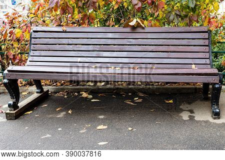 Wooden Bench Under Colorful Foliage Of Girlish Grapes Plant On Street In Moscow City On Autumn Day