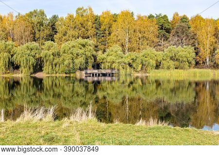 Green Beach And Colorful Forest On Shore Of Pond In City Park On Sunny Autumn Day