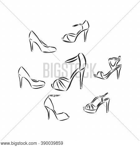 Womans Shoe, Vector Sketch, Womens Shoe, Vector Sketch Illustration