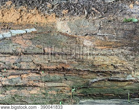 Background, Texture Of An Old Rotting, Damaged Wooden Surface