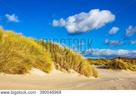Landscape In The Dunes On The North Sea Island Amrum, Germany.