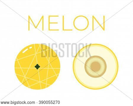 Vector Of Melon And Sliced Half Of Melon On White Background
