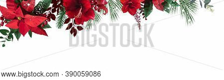 Emerald Christmas Greenery, Red Poinsettia, Amaryllis, Spruce, Fir Vector Design Banner. Simple Styl