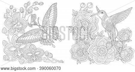 Coloring Page. Butterfly And Hummingbird. Line Art Drawing For Adult Or Kids Coloring Book In Zentan
