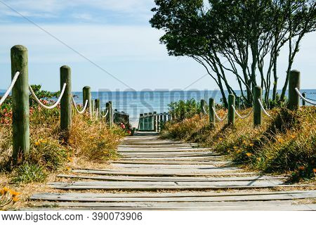 Plank And Bollard Beach Access To Mount Maunganui Main Beach.