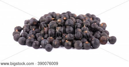 Dry Juniper Berries With Green Branch, Isolated On White Background. Common Juniper Fruits.