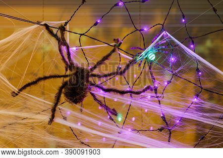 Giant Spider Hanging On Cob Web For Halloween