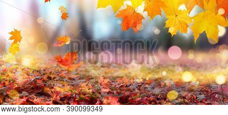 Falling Autumn Maple Leaves. Colorful Autumn Leaves On A Blurry Background In The Park