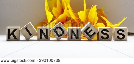 The Word Kindness Made From Wooden Blocks On A Table And A White Background Framed By Foliage. Place