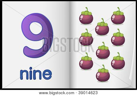 Counting number illustration sheet in book
