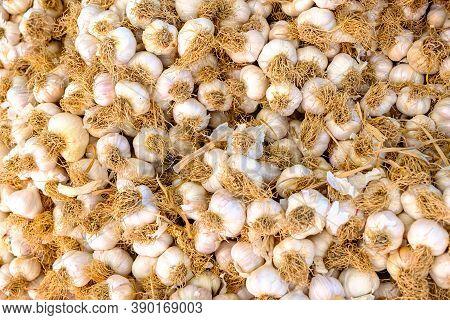 Garlic At Baazar For Sale Organic Food