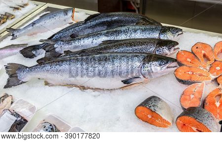 Salmon Fish N The Counter In Ice. Raw Red Fish For Sale. Seafood Shop