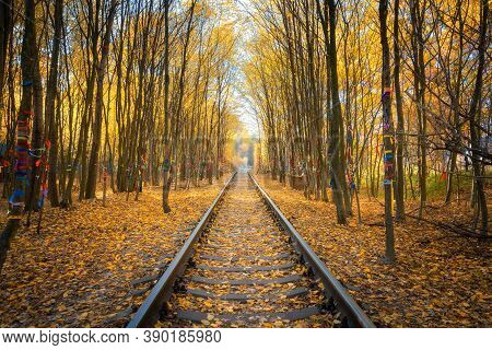Beautiful Railroad In Autumn Forest At Sunset. Industrial Landscape With Railway Station, Trees With