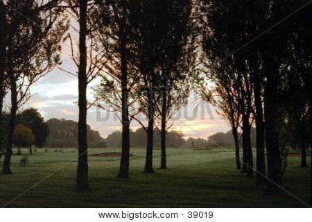 Golf Course At Dawn