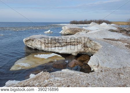 Snow Hummocks On The Shore Of The Spring Ladoga Lake. Leningrad Region, Russia