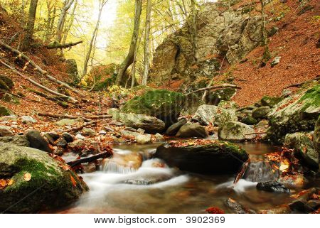 Autumn scene on Cerna Valley southern Romania poster