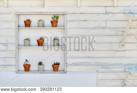 On A White Painted Old Wall Shelf With Potted Houseplants In A Row