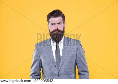 Real Estate. Confident And Serious Male. Serious Intentions. Businessman Formal Suit. Handsome Beard