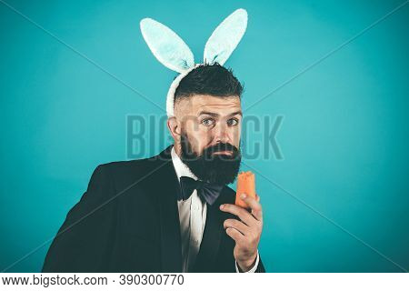 Funny Bunny Man On Easter Day. Happy Easter And Holiday. Nibbles A Carrot Like A Hare. Spring Holida