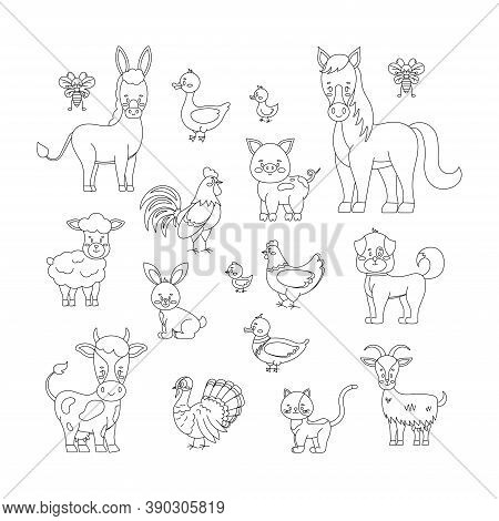 Farm Animals And Birds Line Art Set Isolated On White Background. Cute Linear Livestock Poultry Char