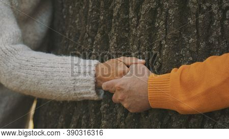 Old Couple Having Romantic Autumn Day In Forest. Hugging Tree. Close Up On Wrinkled Hands. High Qual