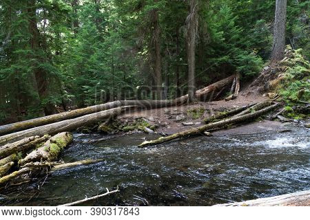 Clear, Clean And Cold National Creek Rushes Through The Wild And Pristine Rogue River - Siskiyou Nat