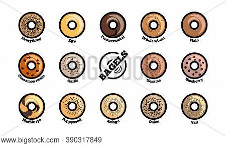 Set Of Bagels With Different Toppings. Top View Vector Illustration. Popular Bread For Sandwiches. C