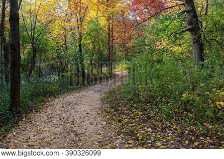 Trail Through Woodlands Of Lebanon Hills Regional Park Minnesota