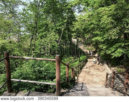 Seoul, South Korea - April 29, 2017: People Walk The Paths In The Namsan Public Park On Namsan Mount
