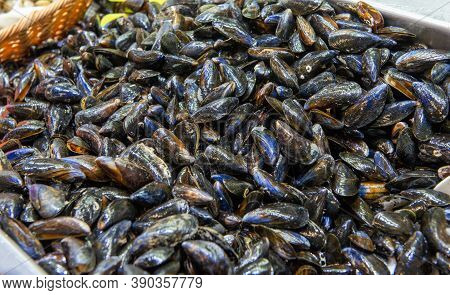 A Piles Of Mussels,  The Seafood Market