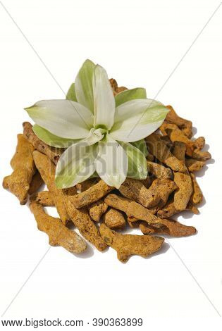 Dry Turmeric Roots With Turmeric Flower Isolated On White Background In Vertical Orientation
